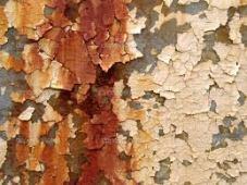 wall pelling